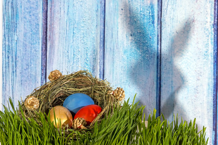 Ester Eggs in handmade grass nest on fresh green grass with shadow of bunny on wooden background