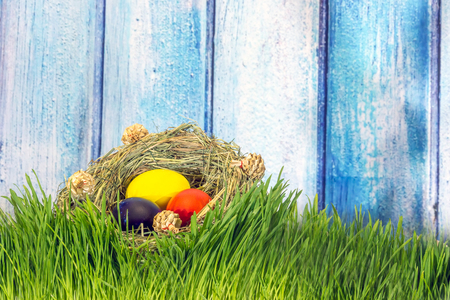 Painted easter eggs in grass nest in grass with shadow of rabbit on blue white wooden background
