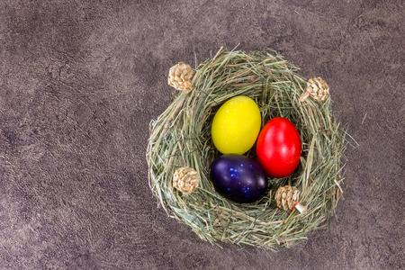 Easter eggs in grass nest on dark brown background