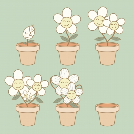 life stages: Illustration of flower growth demonstration life cycle