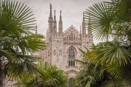 Milan, Italy, June 2019, Milan Cathedral seen among palm trees