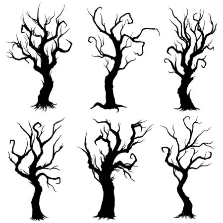 Illustration fantasy bold decorative trees silhouettes