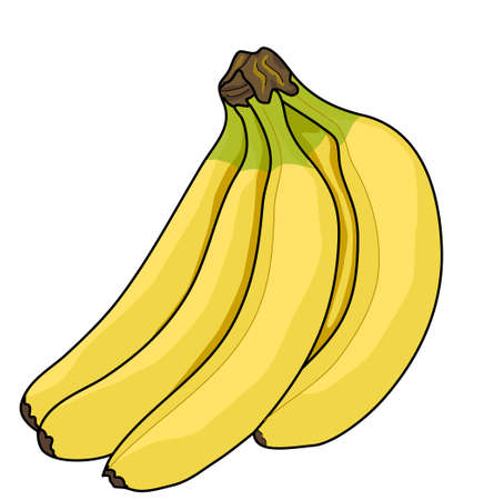 The bunch of yellow bananas on a white background. Illustration