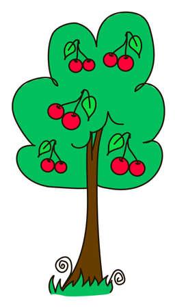 cherrytree: cherry, chemes, merry, cherry-tree, cherries, ripe, red, green, fruit tree