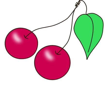 cherrytree: cherry, chemes, merry, cherry-tree, cherries, ripe, red, green, fruit
