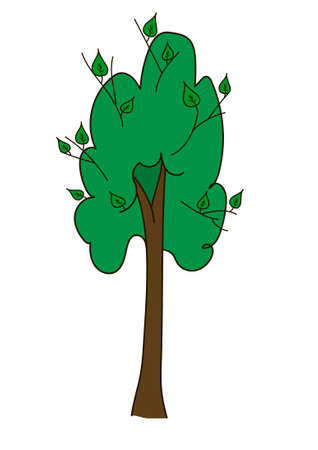 Tall tree with a brown long barrel and broad round upper branches with young green shoots, leaves on a white background. Vektoros illusztráció