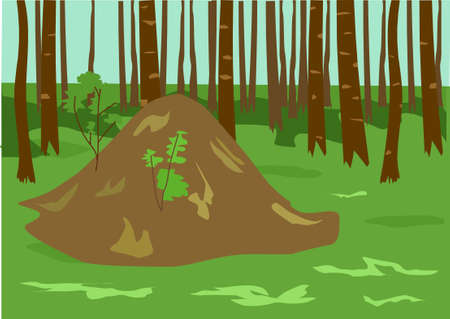 anthill: The forest and anthill on a green meadow.