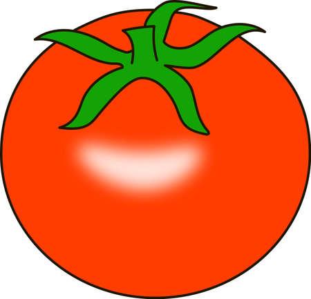 La tomate rond rouge sur un fond blanc.