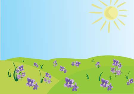 Champ violet, un soleil brillant, un ciel bleu. Vecteurs