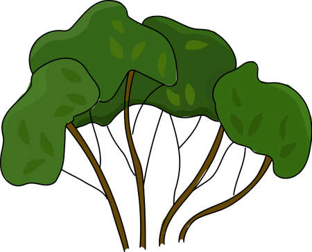 The green bush on a white background. Illustration