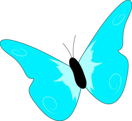 The blue bright butterfly on a white background.