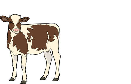 The white calf with brown spots on a white background.