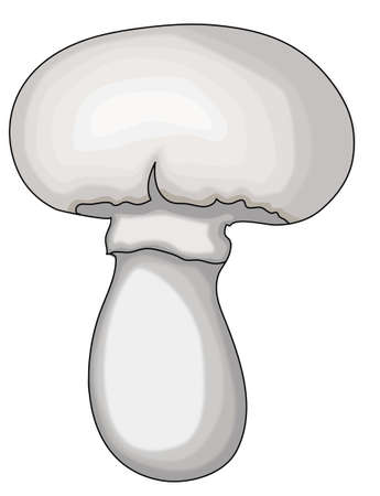 The gray champignon on a white background. Çizim
