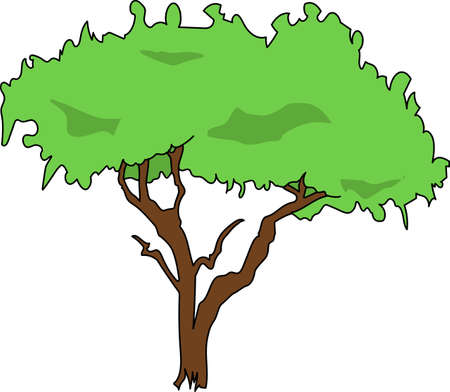 The green tree on a white background.
