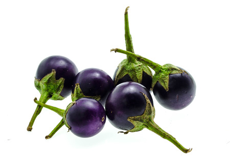 berenjena: berenjena p�rpura del peque�o rey violeta
