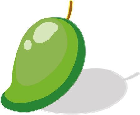 sour: illustration sour mango fruit White background