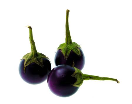 eggplant: purple eggplant of small violet king