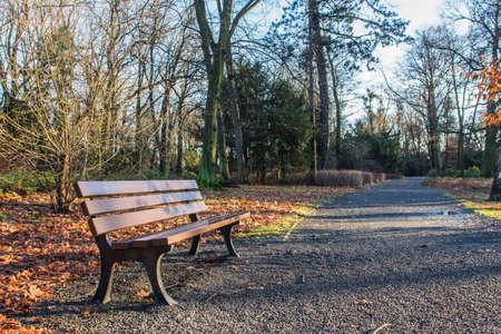 Wooden bench in autumn park in Wroclaw. Poland 版權商用圖片 - 130731050