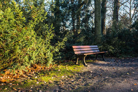 Wooden bench in autumn park in Wroclaw. Poland 版權商用圖片 - 130731053