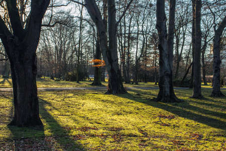 Autumn park in Wroclaw. Poland