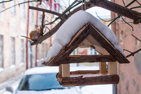 Wooden bird feeder on Tallinn street in winter. Estonia