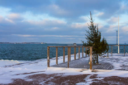 Christmas tree on the pier in Tallinn in winter. Estonia 版權商用圖片
