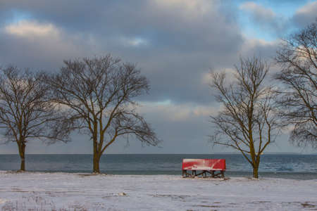 Red bench by the sea in a winter park in Tallinn. Estonia