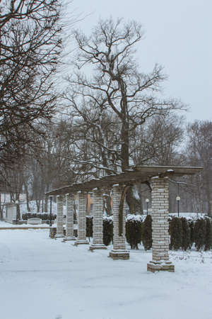 Colonnade in a snow-covered park in Tallinn during a snowfall. Estonia 版權商用圖片