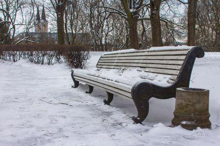 Wooden bench in a winter park in Tallinn. Estonia