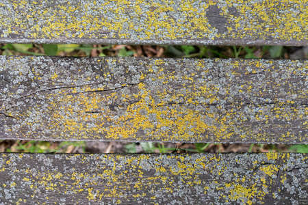 timbered: Close-up view of an old timbered rusty wooden bench