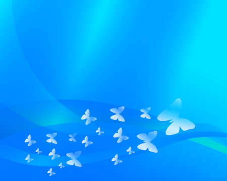 buterfly: buterfly summer background