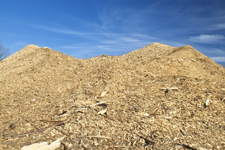 Enormous pile of wood from local deforestation