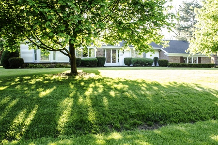 Shaded front lawn of a brick ranch style home with a bay window in the front. Stock Photo