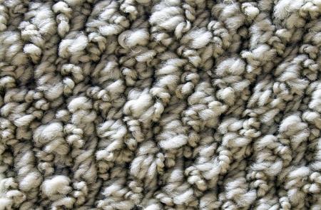 Sand colored carpet fibers. Great detail.