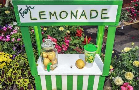 Charming fresh lemonade stand with jar full of lemons  Garden design photo