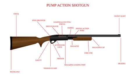 Labeled illustration of a pump action shotgun.