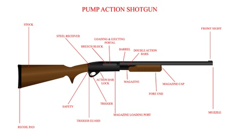 labeled: Labeled illustration of a pump action shotgun.