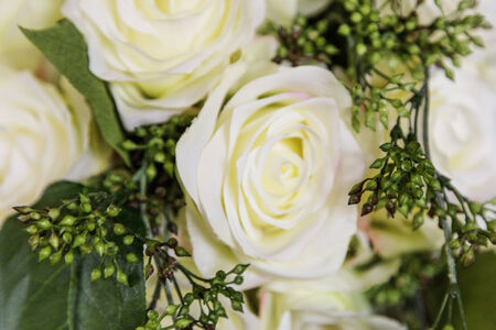 Off white cream colored roses in this classic wedding bouquet.