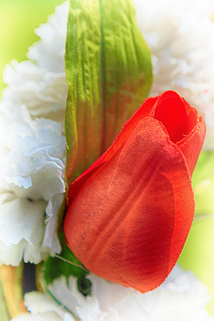 Fake red petaled rose with green leaf pinned to white funeral wreath. Stock Photo