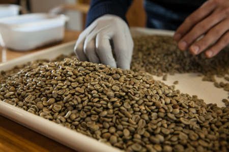Roaster pick up defected beans