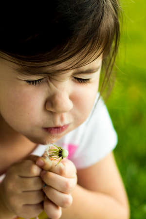 A young girl is making a dandelion wish. photo
