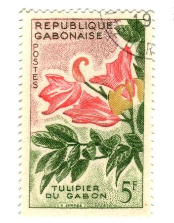 gabon: Old Gobon stamp with tulip of Gabon