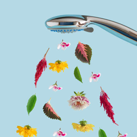 Colorful flowers in bloom and leaves coming out of the shower. Creative minimal concept.