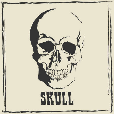 Vector skull on grey background.with format eps10.