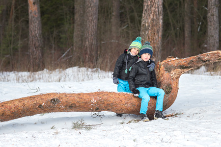 hermanos jugando: Two beautiful and cheerful brothers playing in the winter woods.