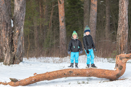 hermanos jugando: Dos hermanos bonito y alegre jugando en el bosque de invierno.