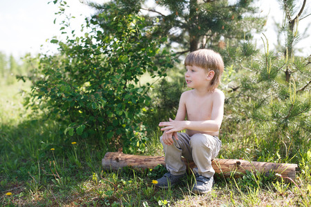 toddler walking: Handsome boy sitting on a log in the summer on the field. Toddler walking outdoors in the summer. Child dreaming and thinking.
