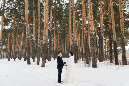 affable: Young couple newlyweds walking in a winter forest in the snow. Bride and groom hugging in the park in winter. Beautiful man and woman in their wedding clothes are among the pines.