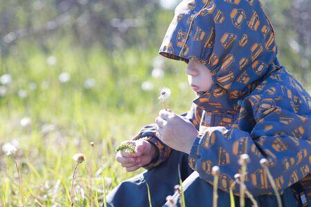 blowing dandelion: Happy child blowing dandelion outdoors in park