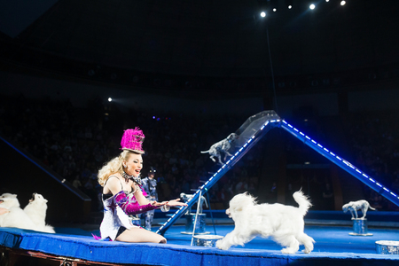 woman dog trainer show at the circus.